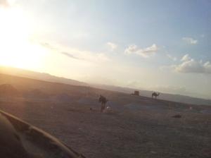 Andere Fortbewegungsmittel in der Wüste